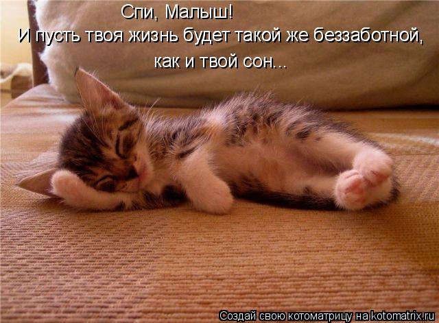 Котоматрица: И пусть твоя жизнь будет такой же беззаботной,  И пусть твоя жизнь будет такой же беззаботной,  как и твой сон... Спи, Малыш!