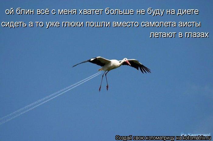Котоматрица: ой блин всё с меня хватет больше не буду на диете сидеть а то уже глюки пошли вместо самолета аисты летают в глазах
