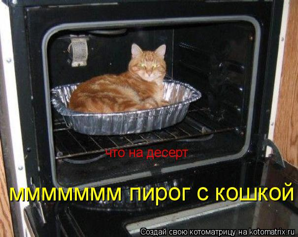 Котоматрица: что на десерт ммммммм пирог с кошкой