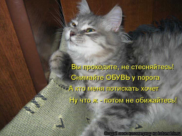Котоматрица: Вы проходите, не стесняйтесь! Снимайте ОБУВЬ у порога А кто меня потискать хочет Ну что ж - потом не обижайтесь!
