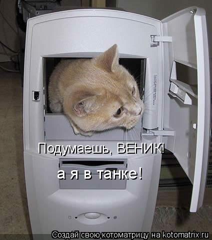 Котоматрица: Подумаешь, ВЕНИК! а я в танке!