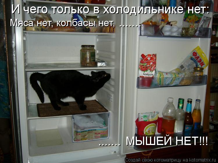 Котоматрица: И чего только в холодильнике нет: Мяса нет, колбасы нет, МЫШЕЙ НЕТ!!! ....... .......