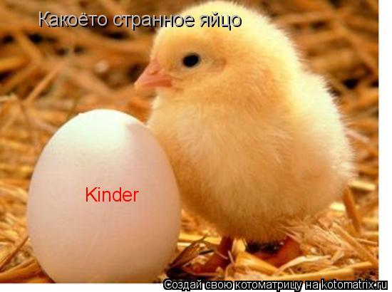 Котоматрица: Какоёто странное яйцо Kinder