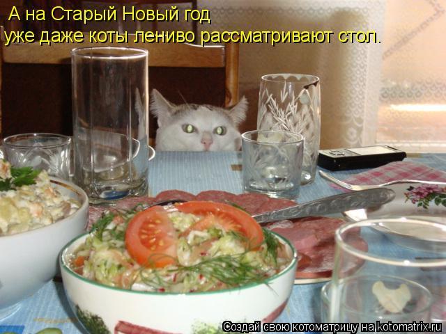 Котоматрица: А на Старый Новый год  уже даже коты лениво рассматривают стол.