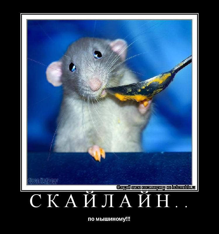 Котоматрица: скайлайн.. по мышиному!!!