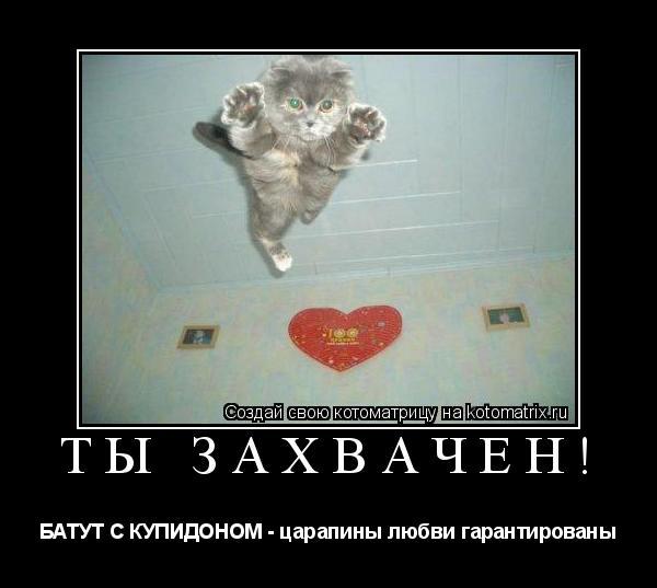 Котоматрица: ТЫ ЗАХВАЧЕН! БАТУТ С КУПИДОНОМ - царапины любви гарантированы