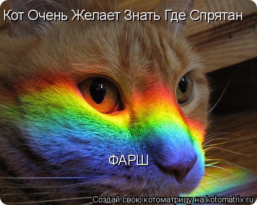 Котоматрица: Кот Очень Желает Знать Где Спрятан  ФАРШ