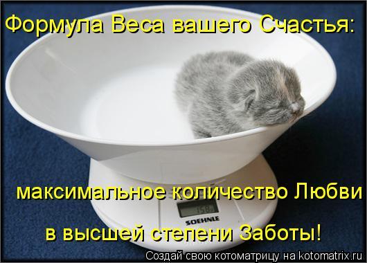 Котоматрица: Формула Веса вашего Счастья: максимальное количество Любви  в высшей степени Заботы!