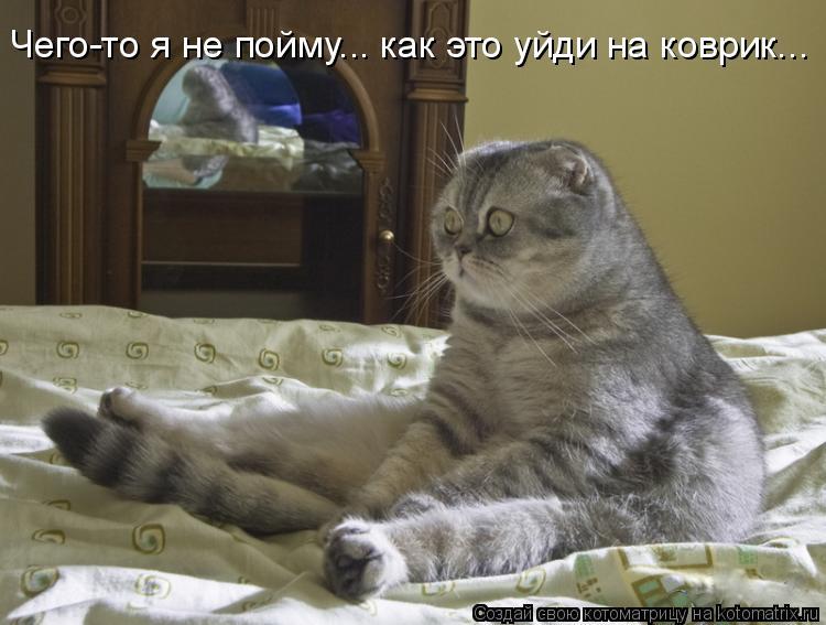 Котоматрица: Чего-то я не пойму... как это уйди на коврик...