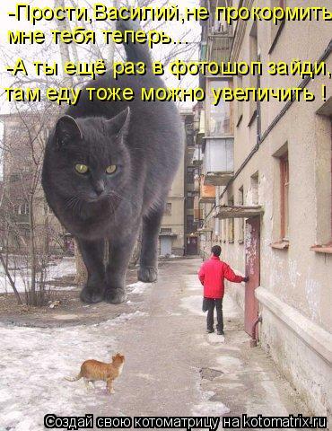 Котоматрица: -Прости,Василий,не прокормить  мне тебя теперь... -А ты ещё раз в фотошоп зайди, там еду тоже можно увеличить !