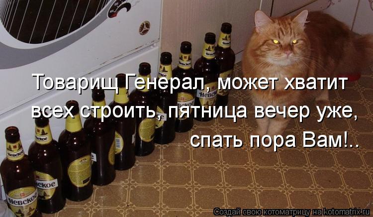 Котоматрица: Товарищ Генерал, может хватит  всех строить, пятница вечер уже, спать пора Вам!..