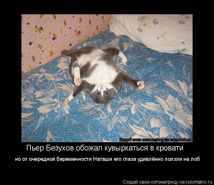 Котоматрица: Пьер Безухов обожал кувыркаться в кровати но от очередной беременности Наташи его глаза удивлённо ползли на лоб