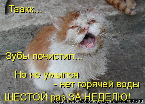 Котоматрица: Таакк... Зубы почистил... Но не умылся - нет горячей воды ШЕСТОЙ раз ЗА НЕДЕЛЮ!
