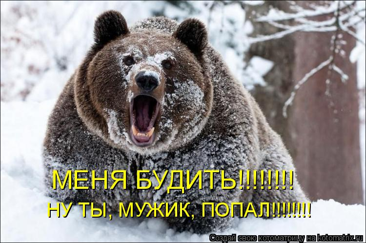 Котоматрица: МЕНЯ БУДИТЬ!!!!!!!! НУ ТЫ, МУЖИК, ПОПАЛ!!!!!!!!