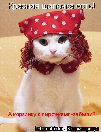 Котоматрица: Красная шапочка есть! .А корзинку с пирожками-забыли?