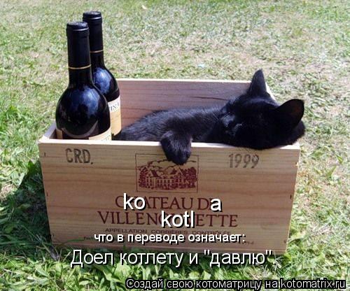 """Котоматрица: ko a kotl что в переводе означает: Доел котлету и """"давлю""""."""