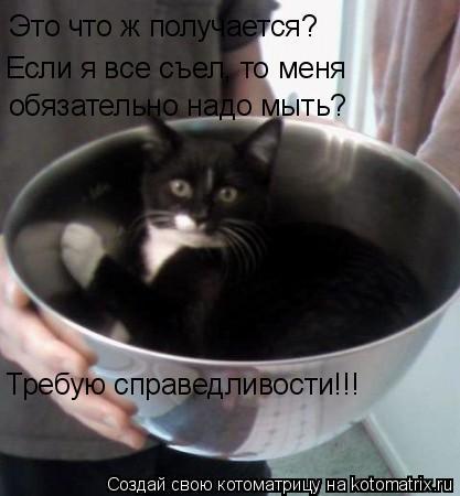 Котоматрица: Это что ж получается? Если я все съел, то меня обязательно надо мыть? Требую справедливости!!!