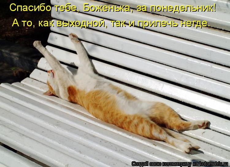 Котоматрица: А то, как выходной, так и прилечь негде. Спасибо тебе, Боженька, за понедельник!