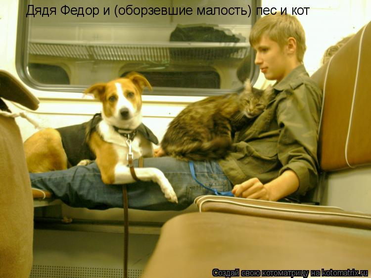 Котоматрица: Дядя Федор и (оборзевшие малость) пес и кот