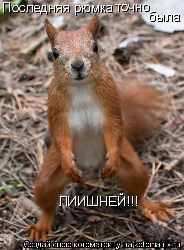 Котоматрица: Последняя рюмка  точно была ЛИИШНЕЙ!!!