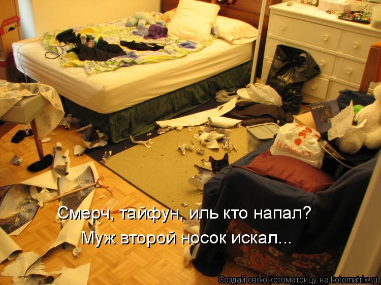 Котоматрица: Смерч, тайфун, иль кто напал?  Муж второй носок искал...