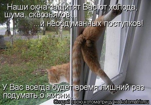 Котоматрица: Наши окна защитят Вас от холода, шума, сквозняков... ...и необдуманных поступков! У Вас всегда будет время лишний раз подумать о жизни...