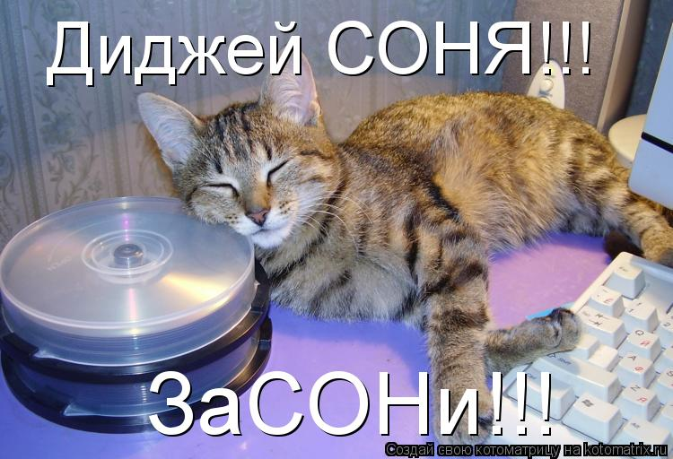 Котоматрица: Диджей СОНЯ!!! ЗаСОНи!!!