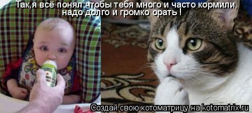 Котоматрица: Так,я всё понял:чтобы тебя много и часто кормили, надо долго и громко орать !