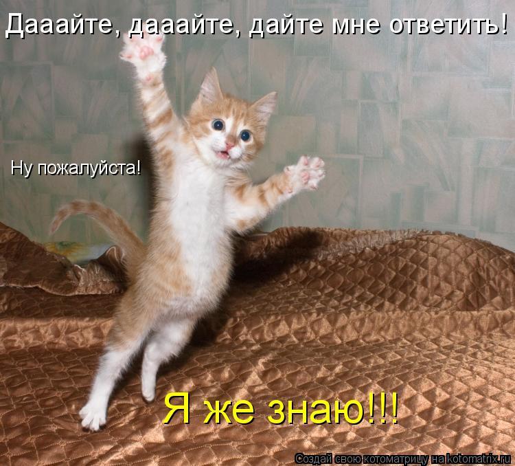 Котоматрица: Дааайте, дааайте, дайте мне ответить! Ну пожалуйста! Я же знаю!!!