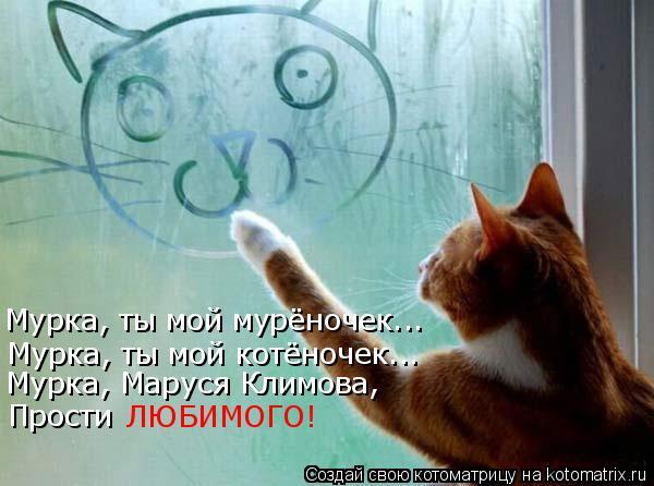Котоматрица: Мурка, ты мой мурёночек... Мурка, ты мой котёночек... Мурка, Маруся Климова, Прости ЛЮБИМОГО!