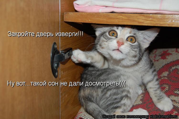 Котоматрица: Закройте дверь изверги!!! Ну вот...такой сон не дали досмотреть(((