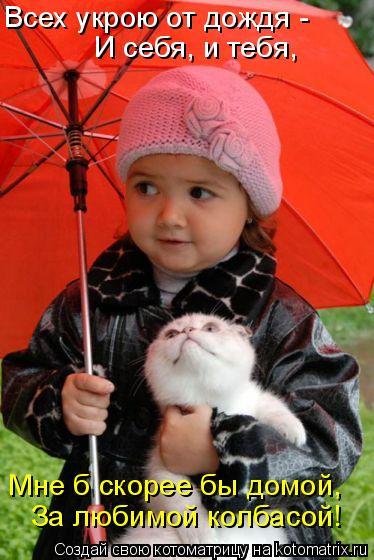 Котоматрица: Всех укрою от дождя -  И себя, и тебя, Мне б скорее бы домой, За любимой колбасой!