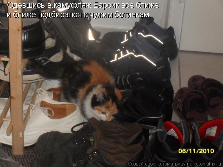 Котоматрица: Одевшись в камуфляж Барсик все ближе и ближе подбирался к чужим ботинкам...