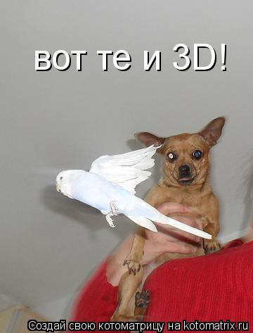 Котоматрица: вот те и 3D!