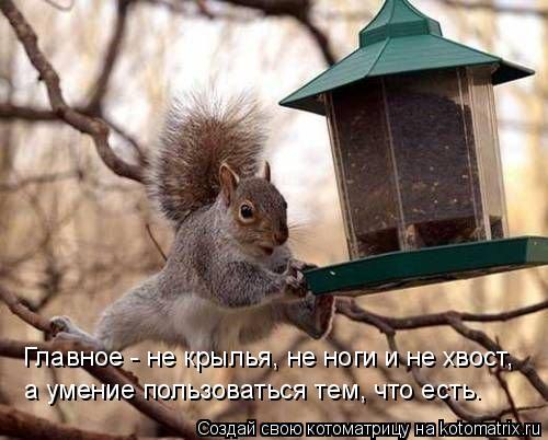 Главное - не крылья, не ноги и не хвост, а умение пользоваться тем, чт