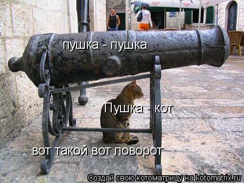 Котоматрица: пушка - пушка Пушка - кот вот такой вот поворот