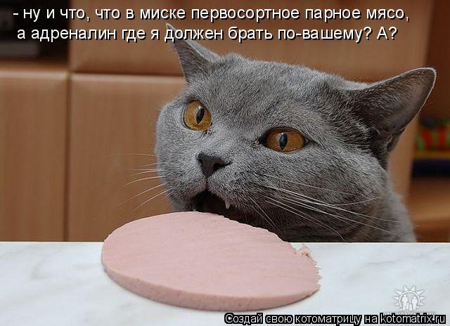 - ну и что, что в миске первосортное парное мясо, а адреналин где я до
