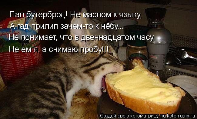 Пал бутерброд! Не маслом к языку, А гад прилип зачем-то к нёбу... Не п