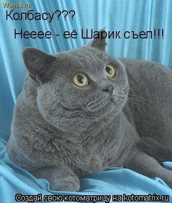 Котоматрица: Колбасу??? Нееее - её Шарик съел!!!