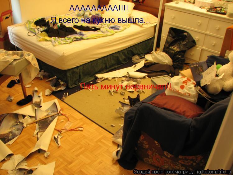 Котоматрица: ААААААААА!!!! Я всего на кухню вышла... Пять минут нервничал!!