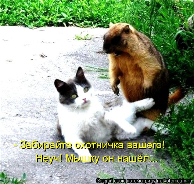 Котоматрица: - Забирайте охотничка вашего! Неуч! Мышку он нашёл...