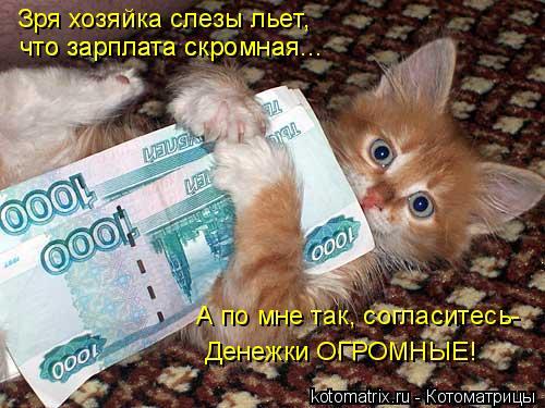 Котоматрица: Зря хозяйка слезы льет, что зарплата скромная... что зарплата скромная... А по мне так, согласитесь- Денежки ОГРОМНЫЕ!