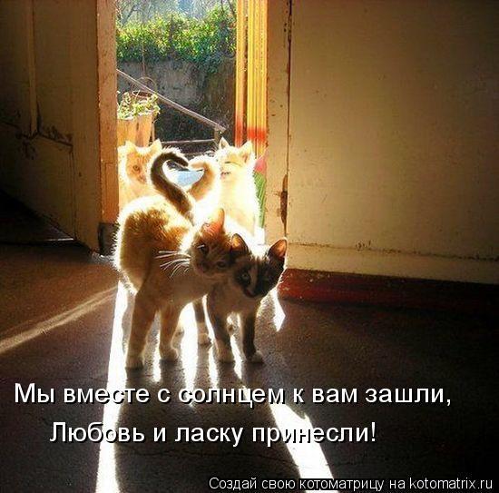 Мы вместе с солнцем к вам зашли,  Любовь и ласку принесли!