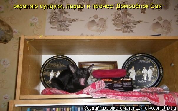 Котоматрица: охраняю сундуки, ларцы и прочее. Домовёнок Сая