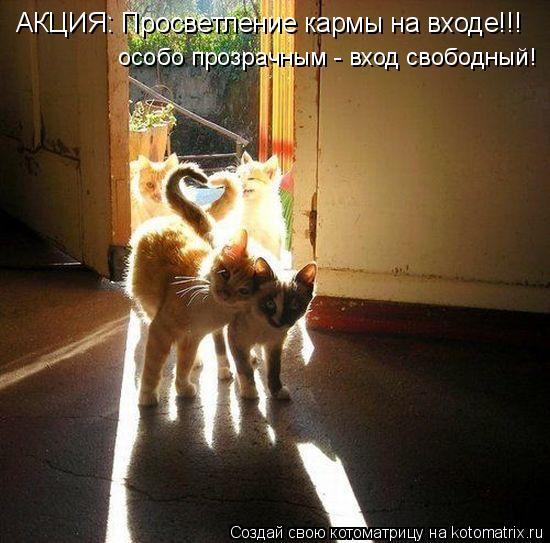 Котоматрица: АКЦИЯ: Просветление кармы на входе!!! особо прозрачным - вход свободный!