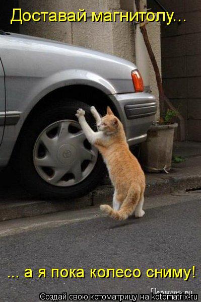 Котоматрица: Доставай магнитолу... ... а я пока колесо сниму!