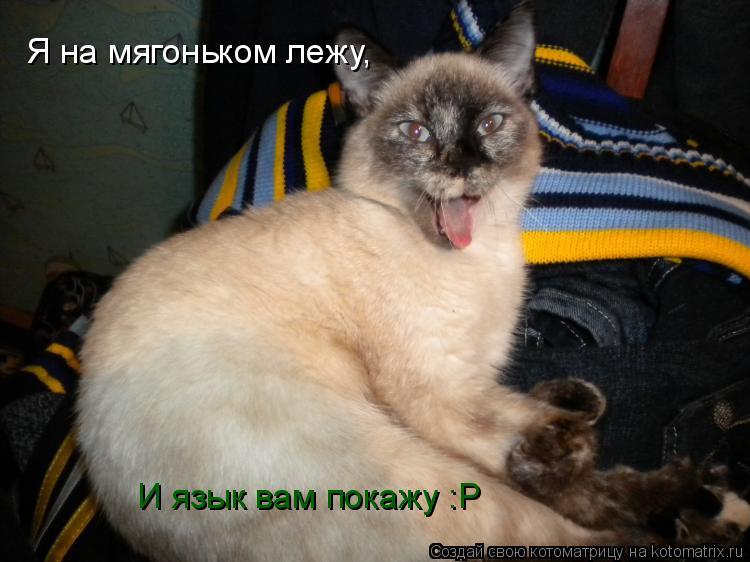 Котоматрица: Я на мягоньком лежу, И язык вам покажу :Р