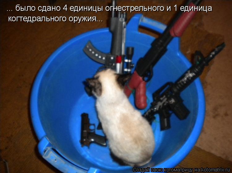 http://kotomatrix.ru/images/lolz/2010/11/23/746172.jpg
