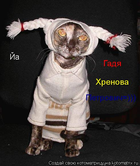 Котоматрица: Йа Гадя Хренова Петрович=)))