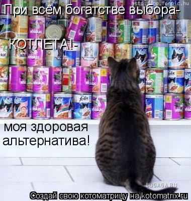 Котоматрица: При всём богатстве выбора- КОТЛЕТА!- моя здоровая альтернатива!